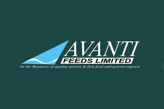 Avanti feeds